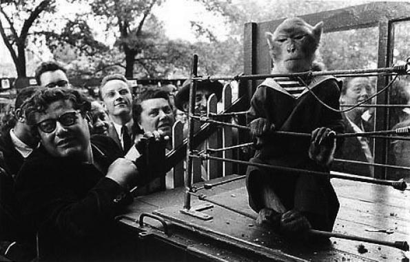 Robert Doisneau, The Superior Animal