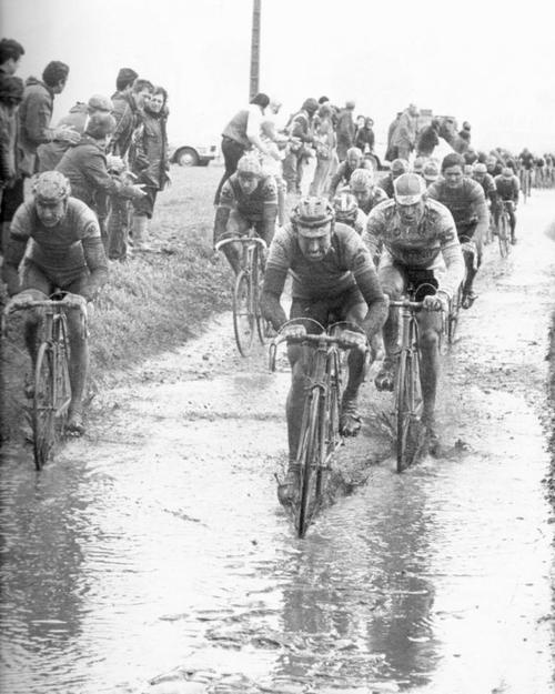 hm7:    (via CYCLING ART BLOG: Paris Roubaix 1985 Muddy Marvelous) #ParisRoubaix