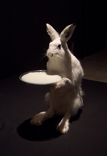 (Thanks:  Pekka Jylhä)  I shall not say but what the white power looketh like . . . Wrong Rabbit . . .