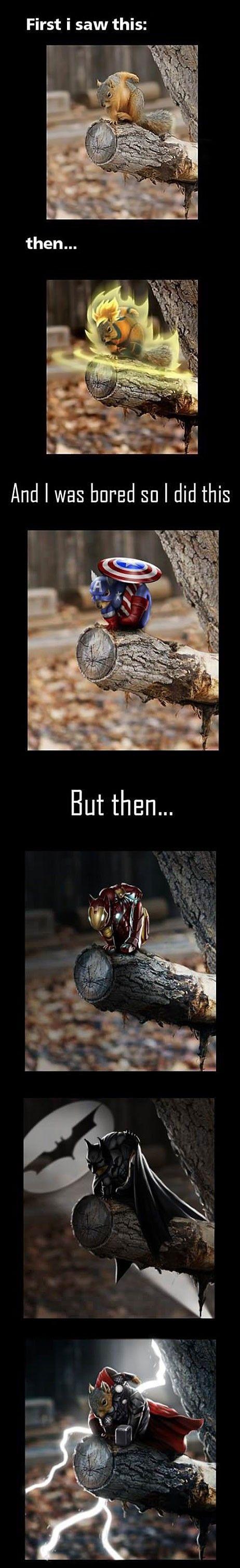 Superhero Squirrel - Imgur