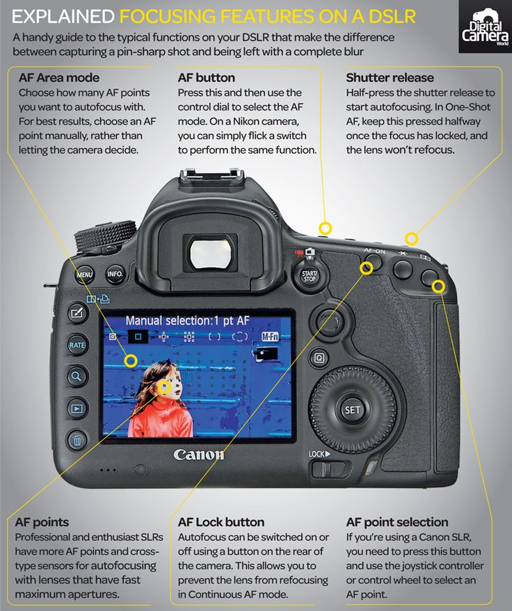 DSLR focusing features explained: your camera's options and how to use them