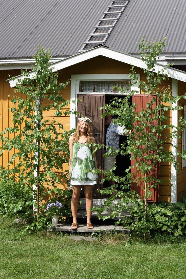 Juhannuskoivut - Midsummer birches by the house Finland