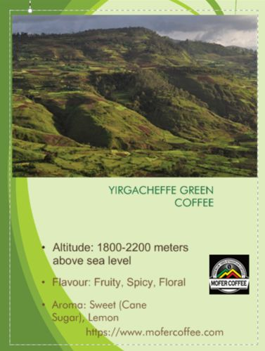 Ethiopian Yirgacheffe Green Coffee
