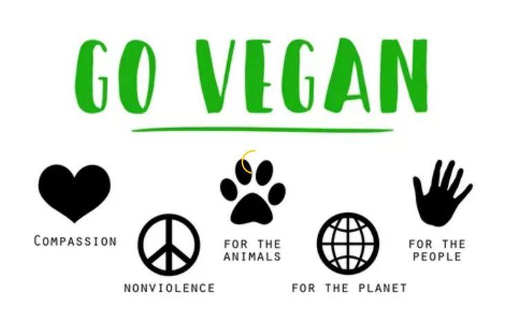 ¿Que es lo mas importante para comenzar a ser vegano?  Para empezar tienes que tener bien clara tu decisión pues renunciar al estilo de vida que llevas hasta el momento es algo fuerte, el mundo está