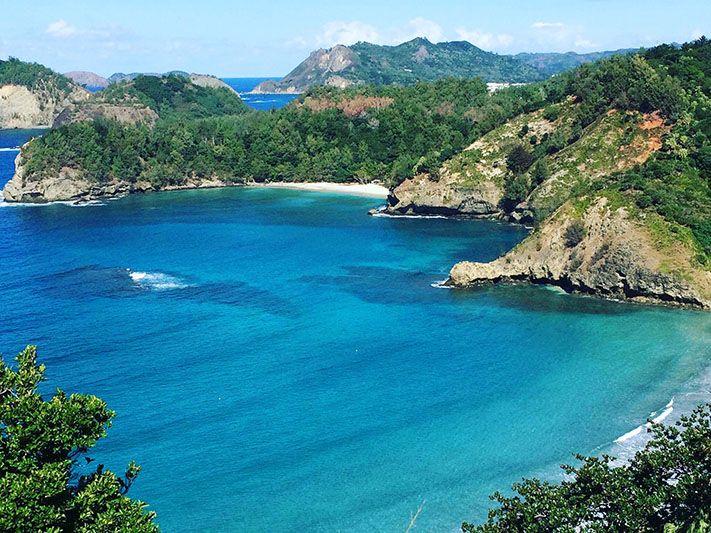 Ocean Encounters and Bonin Islands - By Kaori Freda