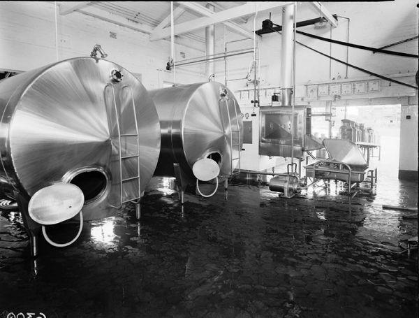 milk plant essay Milk pasteurizer 200/400 l/h (htst flow pasteuriser) for mini dairy plant - duration: 1:07 abfÜlltechnik-zootechnika maschinenbau gmbh 22,399 views the milk processing plant at mccarty family farms - duration: 5:53 mccarty family farms 72,227 views 5:53.