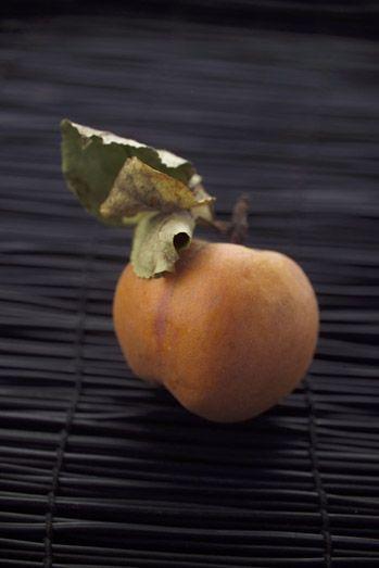 pomme #reinettes #feuille #dorure #noel