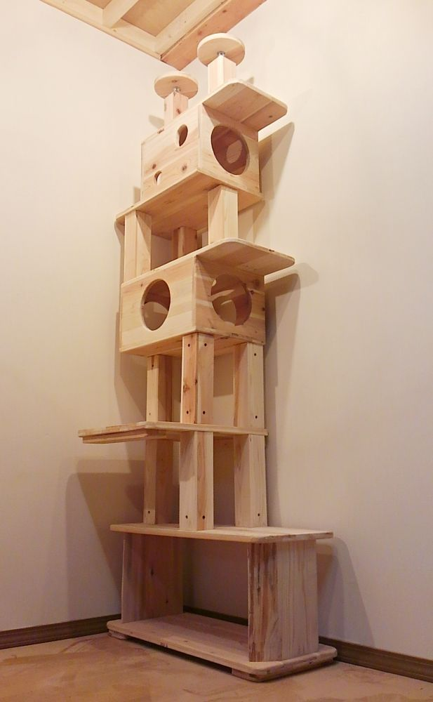 Cat tree tower google cat trees pinterest cat for Homemade cat tower
