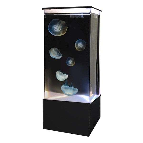 The third generation in EON family, the 3ON is similar to the original 10 gallon EON, but in a 20 gallon stretched version. This 20 gallon Jellyfish Tumbler Aquarium comes complete with everything you