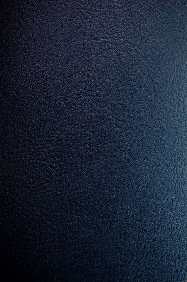 Leather Texture 04