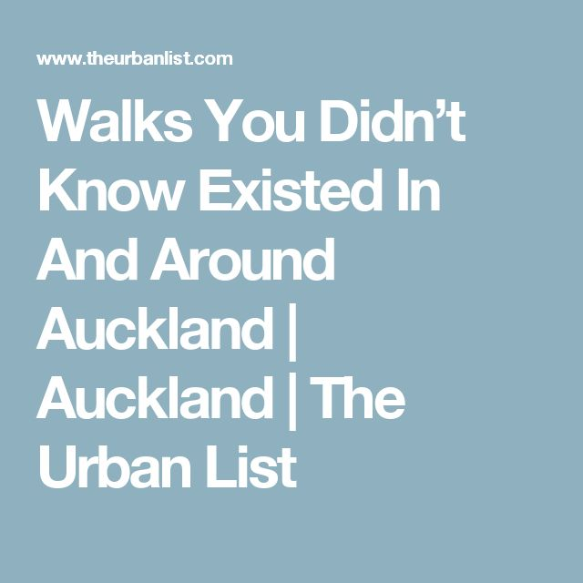 Walks You Didn't Know Existed In And Around Auckland | Auckland | The Urban List