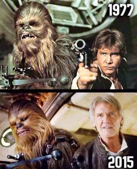 Chewie must have found some seriously good hair conditioner.