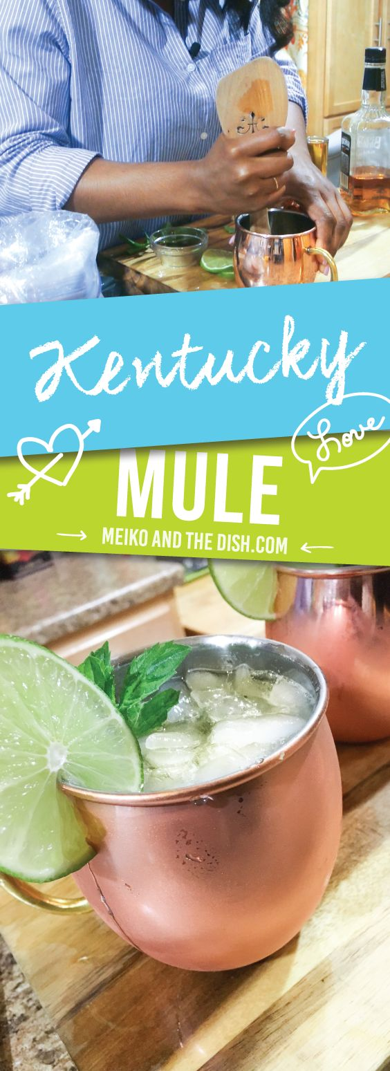 Kentucky Mules are the perfect summer drinks. The delicious contrasts between bright and spicy flavors from muddled mint and ginger beer make this refreshingly aromatic beverage a summer hit Via- https://www.meikoandthedish.com/kentucky-mule/