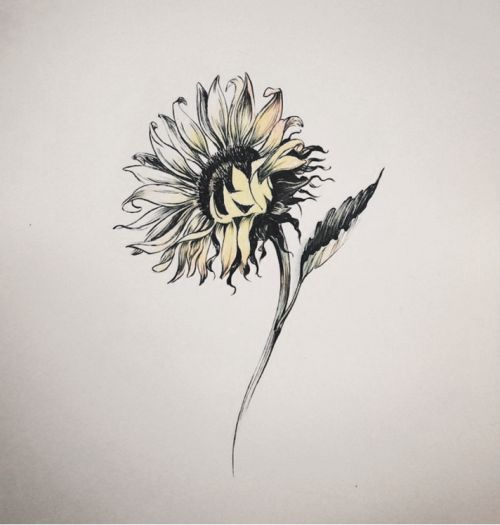 givememoneyfortattoos: Sunflower tattoo design. Tattoo artist: doy