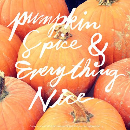 Pumpkin spice and everything nice; my new favorite quote for fall
