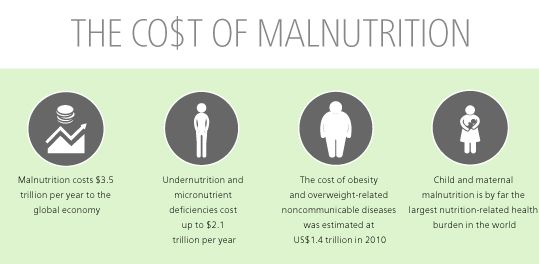 causes of malnutrition in india pdf