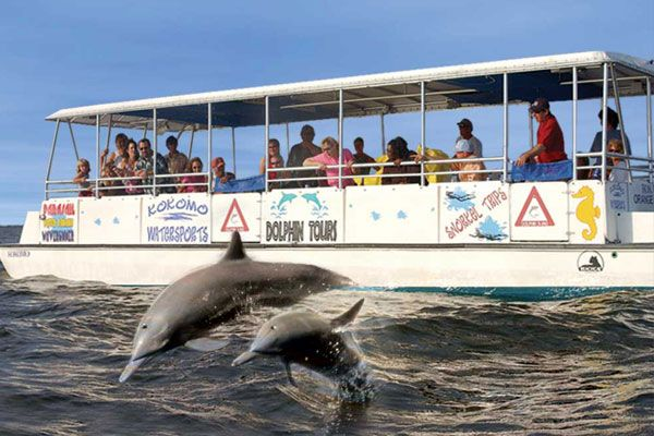 For dolphin tours in the Outer Banks with a dolphin-sighting guarantee, call Kitty Hawk Watersports at (252) 441-2756.