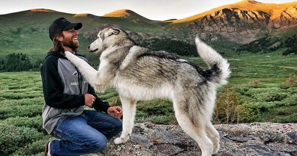"Whenever he goes on holiday, Kelly Lund always takes his dog with him. Lund, an outdoor adventure professional, says he is ""a firm believer in the intrinsic value of adventures and challenging yourself."" His dog, who is called Loki, is a wolfdog — a mixture of a husky, wolf and malamute. Kelly..."