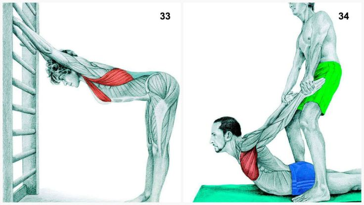 адействованные мышцы: груди и широчайшая мышца спины Выполнение: станьте на достаточном расстоянии от стены так, чтобы во время прикосновения к стене Ваше тело было параллельно полу. Примите указанное на картинке положение, поддерживая спину ровной, а затем слегка подайте грудь вперед, чтобы обеспечить растяжку мышц.
