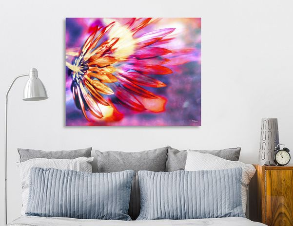 Discover «Flamed Chrysanthemum», Exclusive Edition Canvas Print by Nannie van der Wal - From 45€ - Curioos