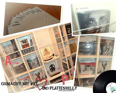 die besten 25 billy regal ideen auf pinterest billy regal ikea billy regal hack und billy. Black Bedroom Furniture Sets. Home Design Ideas