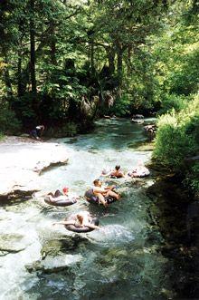 NEAR ORLANDO _Kelly Park/Rock Springs Run. Rent tubes, natural spring..