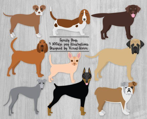 Greyhound Leduc