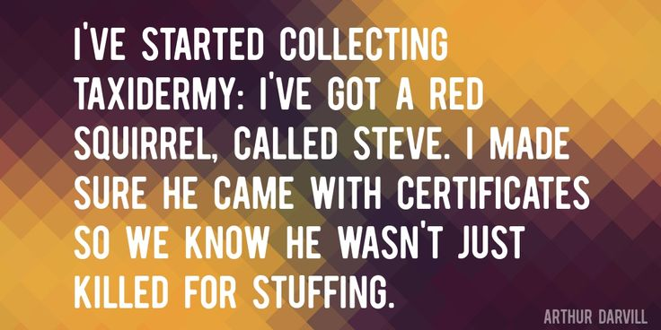 Quote by Arthur Darvill => I've started collecting taxidermy: I've got a red squirrel, called Steve. I made sure he came with certificates so we know he wasn't just killed for stuffing.