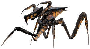 Warrior Bug | Starship Troopers Wiki | Fandom powered by Wikia