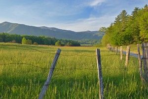 6 Things We Love About Spring Vacations in a Smoky Mountain Cabin Rental