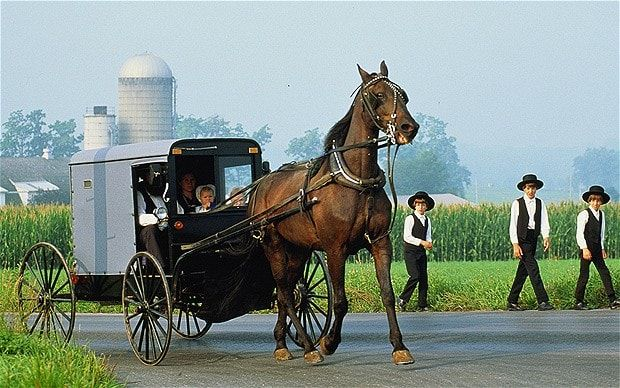 Amish men jailed over reflective triangle dispute - Telegraph
