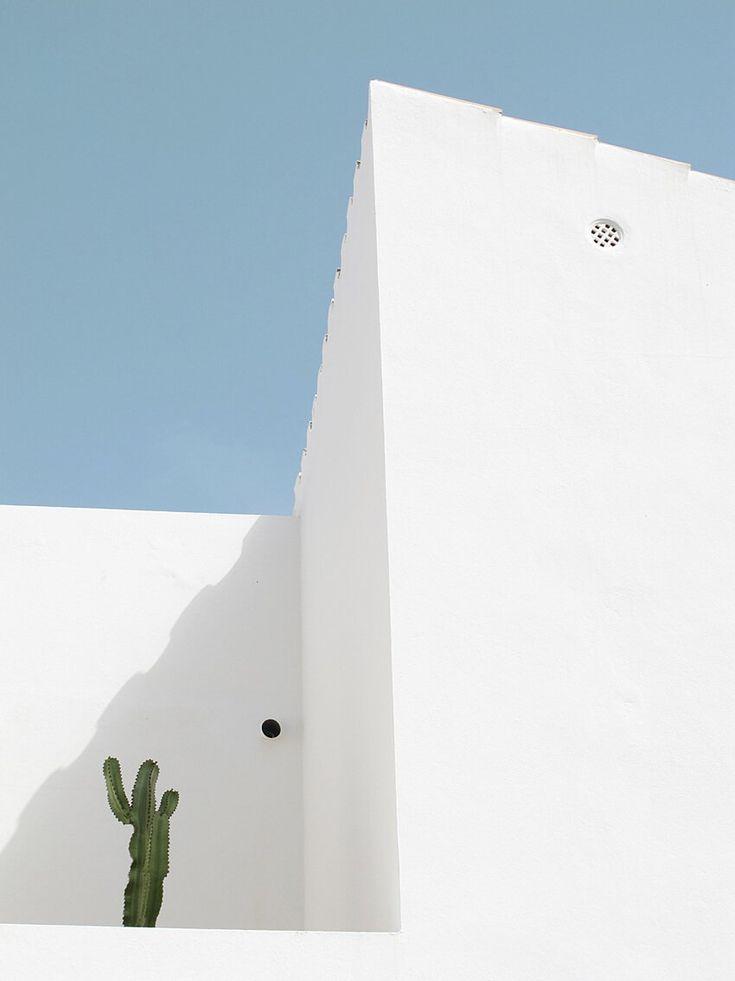 White Building Amp Cactus Minimalist Photography