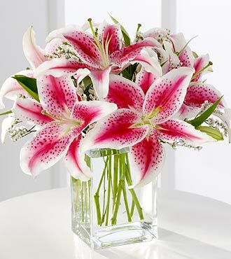 FTD Pink Lily Bouquet - DELUXE  Price: 47.90    This is a sweet bouquet that expresses your love and affection. Fragrant pink Stargazer lilies are accented with pink statice and arranged in a clear glass vase.