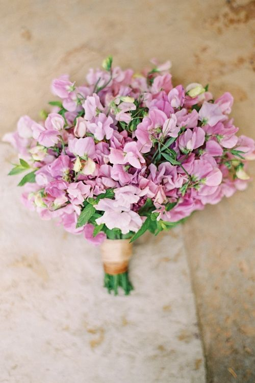 Top 25 Best Sweet Pea Bridal Bouquet Ideas On Pinterest Pale Pink Wedding Flowers And