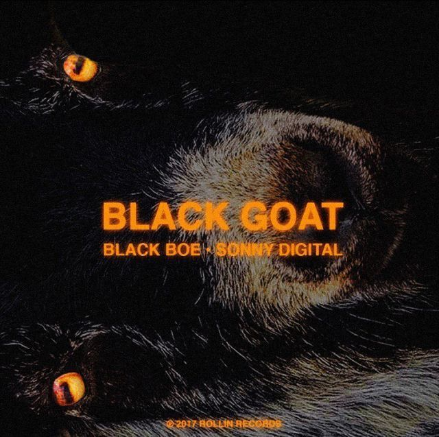 Sonny Digital and Black Boe celebrate Sonny's 26th birthday by releasing their joint EP 'The Black GOAT'. Featuring nine records and guest appearances by Dice Soho and Dougie F.