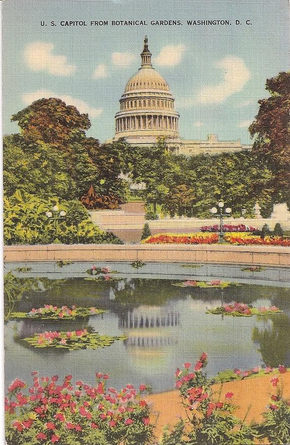 91 Best Images About Antique And Vintage Postcards Washington Dc Vpr On Pinterest House Of