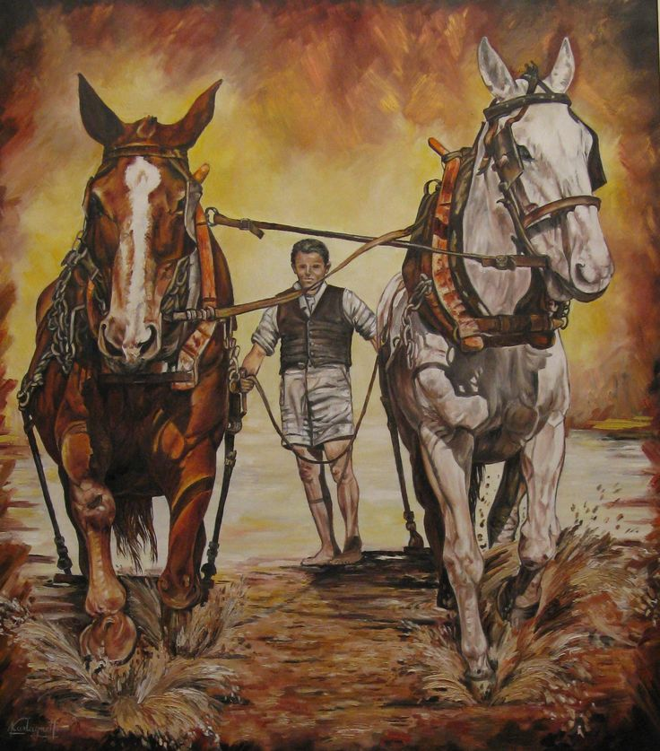 """Ricordi in Toscana"" olio su tela (70 x 80)"