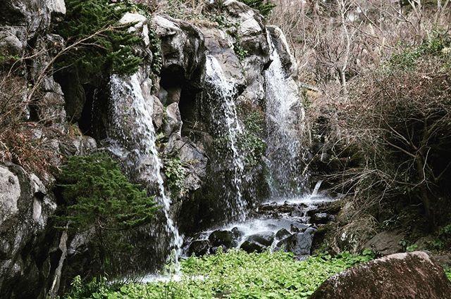 #travel #travelintokyo #travelinjapan #tokyo #热海 #熱海梅園 #熱海旅行 #梅 #梅園 #flowers #flowersblooming #blossom #blooming #river #nature #friday #atami #20170224 #day2 #elfwinnieinjapan #elfwinnietraveltime by elfwinnie1104. 梅園 #梅 #day2 #atami #blossom #friday #flowers #travelintokyo #blooming #20170224 #flowersblooming #travelinjapan #热海 #elfwinnietraveltime #river #nature #elfwinnieinjapan #tokyo #熱海梅園 #熱海旅行 #travel #TagsForLikes #TagsForLikesApp #TFLers #tweegram #photooftheday #20likes #amazing…
