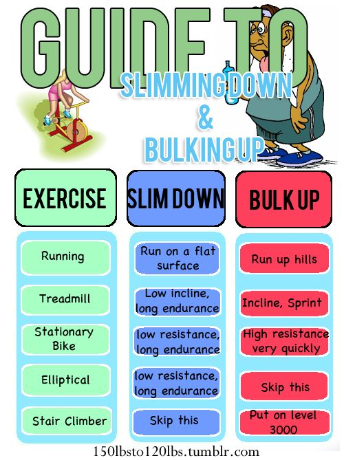 Guide to Slimming Down and Bulking Up