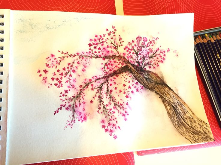 Ink pencil - flower tree - by Stingna