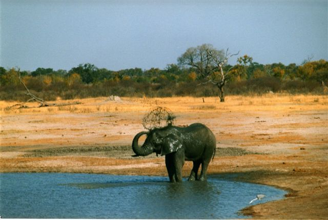 simbabwe landschaft auf Simbabwe Reiseführer