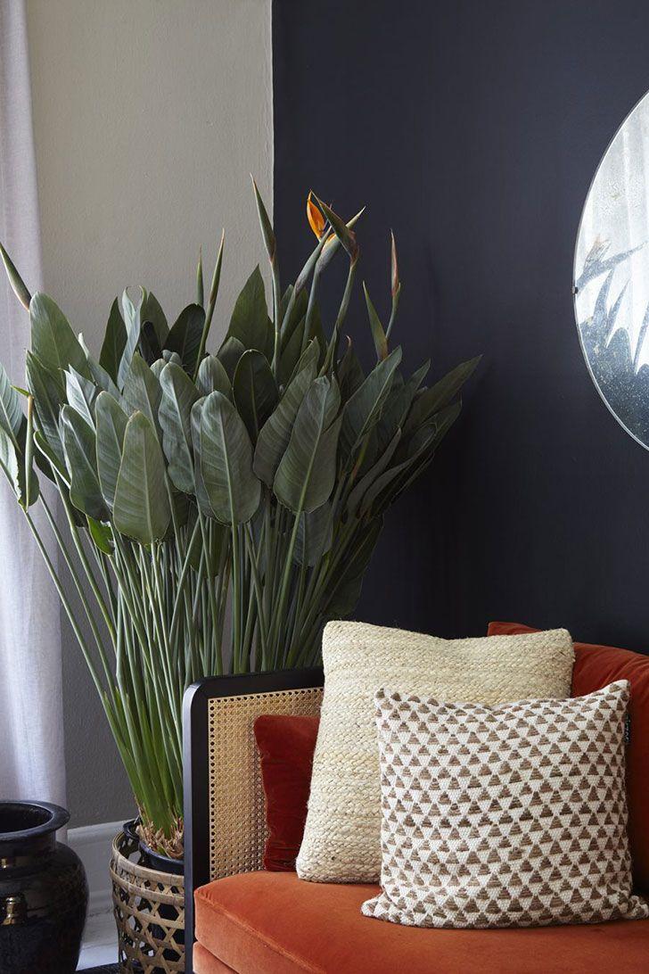 House of 2018 by Houzz #interior #design #home #decor #Idea #Inspiration  #cozy #room #style #light #color