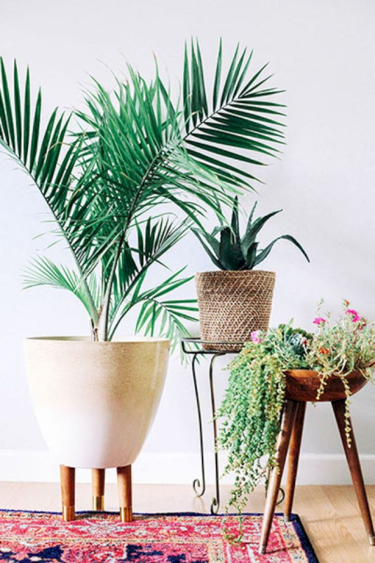 48 DIY Plant Stand Ideas to Fill Your Home with Greenery  #DIYPlantStandIdeas