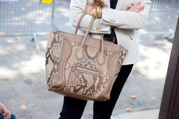 Celine bag with snake print | Bags | Pinterest | Celine Bag, Snake ...