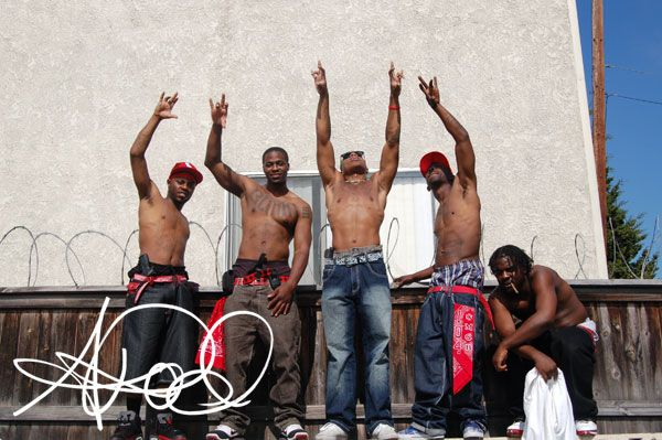 gangs and their effects Gangs are an essential part of growing up and becoming a law and these are explored in gangs and in their social interactions with each other and people outside.