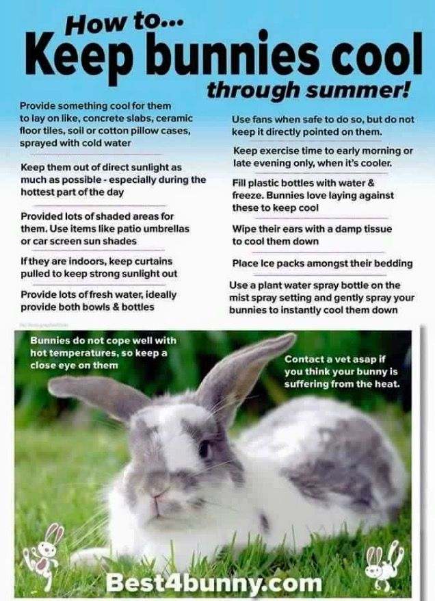 Cool ways to keep cool More