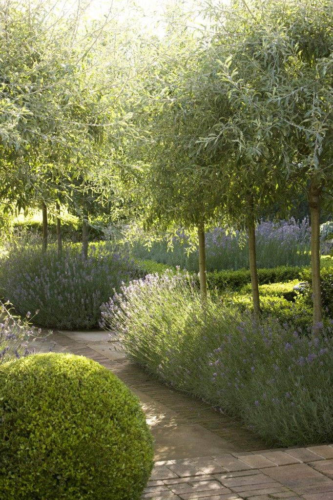 Greens, silvers and purples. Great contrast to create a beautiful vista. Peter Fudge design.
