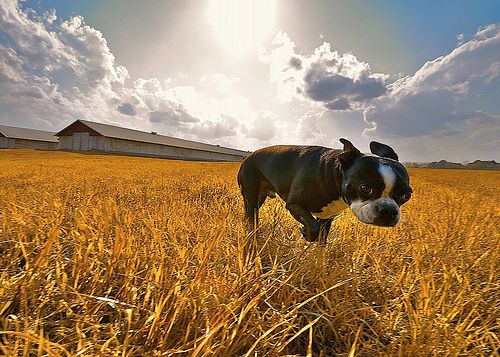 17 Amazing Wide Angle Images - Digital Photography School