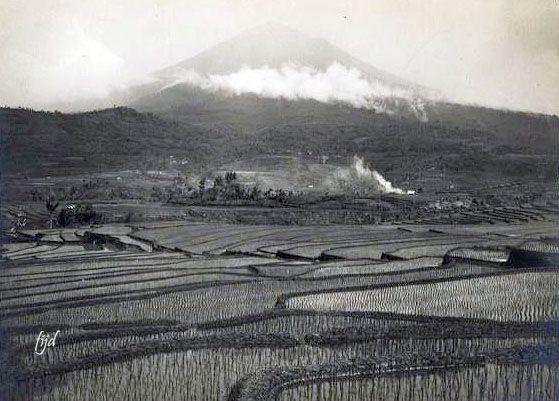 Pemandangan Sawah Di Kaki Gunung Cikuray Garut Jawa Barat Sekitar 1920 Pemandangan Sejarah Indonesia