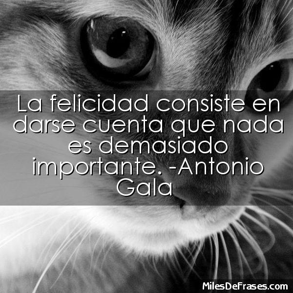 La felicidad consiste en darse cuenta que nada es demasiado importante. -Antonio Gala